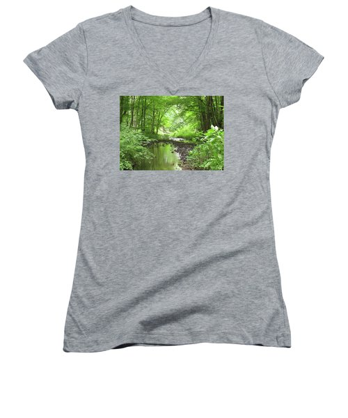 Carver Creek Women's V-Neck T-Shirt (Junior Cut) by Kimberly Mackowski