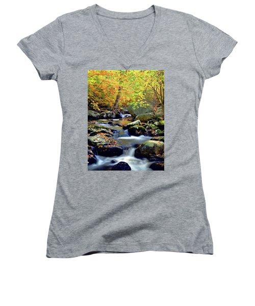 Cascade Brook Women's V-Neck T-Shirt