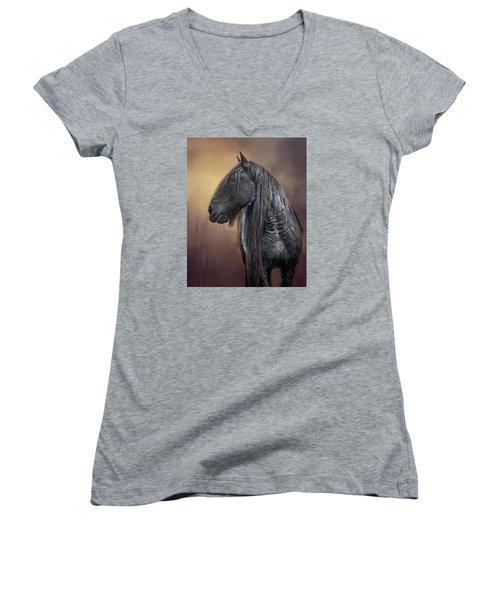Castle Light Women's V-Neck T-Shirt