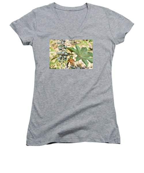 Women's V-Neck T-Shirt (Junior Cut) featuring the photograph Castor Oil Plant by Ray Shrewsberry