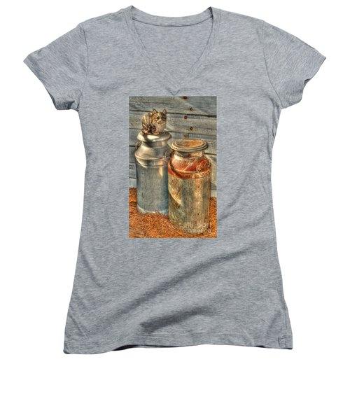 Cat And The Churns Women's V-Neck T-Shirt