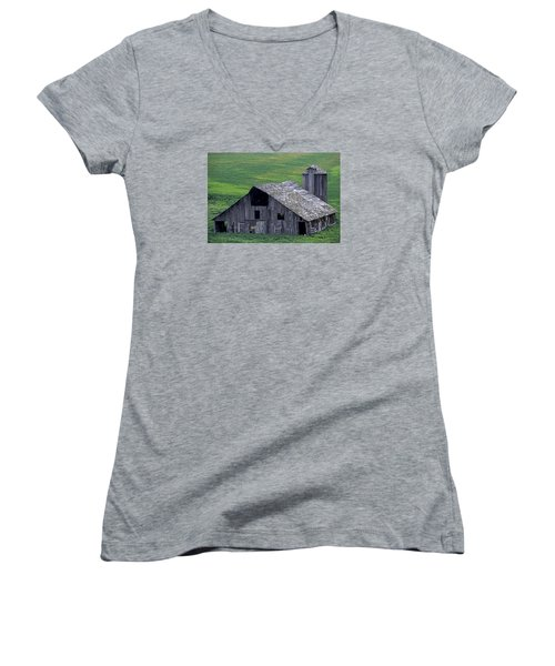 Cat Barn Women's V-Neck (Athletic Fit)