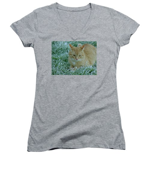 Cat In Frosty Grass Women's V-Neck T-Shirt (Junior Cut) by Shirley Heyn