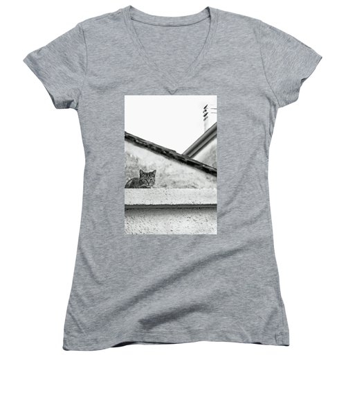 Cat On A Roof, Varenna Women's V-Neck T-Shirt (Junior Cut) by Brooke T Ryan