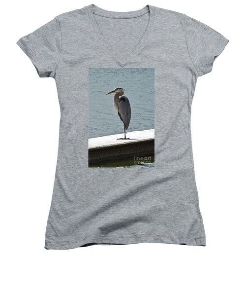 Women's V-Neck T-Shirt (Junior Cut) featuring the photograph Catching Some Morning Rays by Carol  Bradley