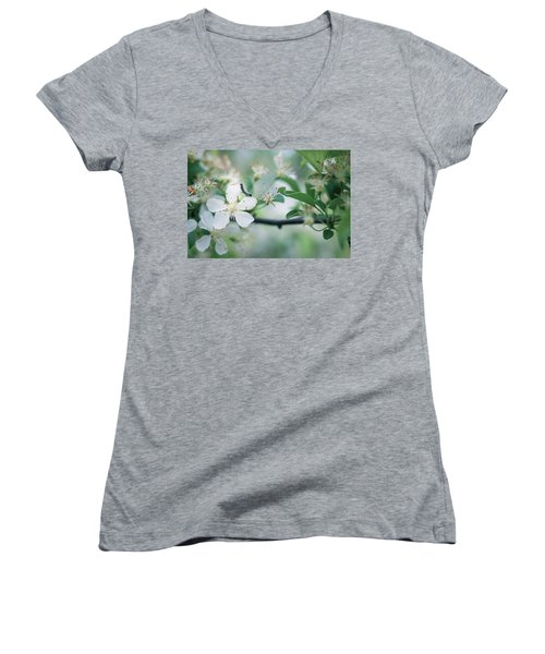 Caterpillar On A Tree Blossom Women's V-Neck (Athletic Fit)