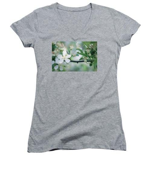 Caterpillar On A Tree Blossom Women's V-Neck