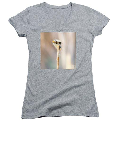 Caterpillar On The Stick Women's V-Neck T-Shirt (Junior Cut) by Gurgen Bakhshetsyan