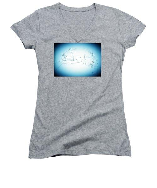 Catnap Women's V-Neck T-Shirt