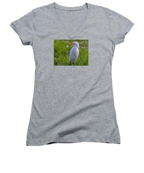 Cattle Egret Women's V-Neck
