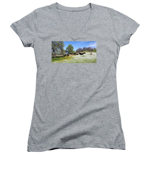 Cattle N Flowers Women's V-Neck T-Shirt (Junior Cut) by Diane Bohna