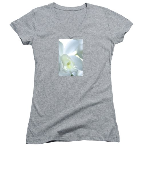 Cattleya Orchid #1 Women's V-Neck T-Shirt (Junior Cut) by George Robinson