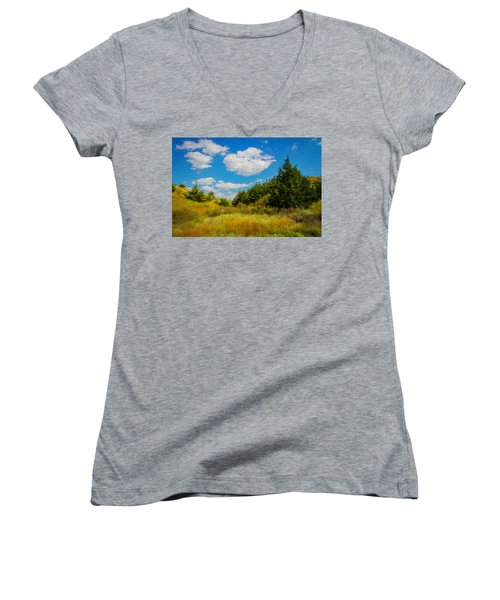 Cedar Gulch Women's V-Neck T-Shirt