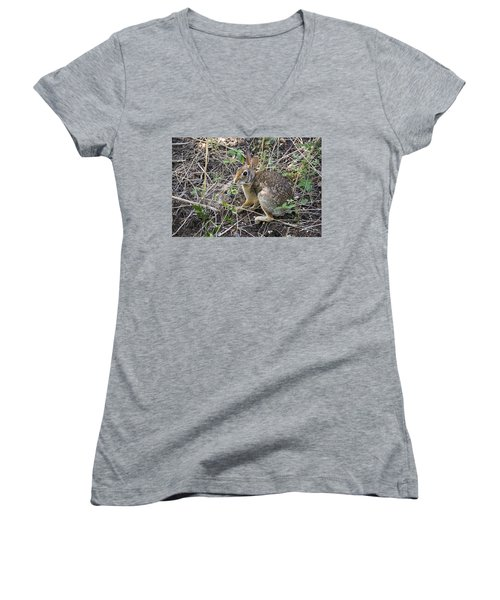 Cedar Hill Bunny Women's V-Neck T-Shirt