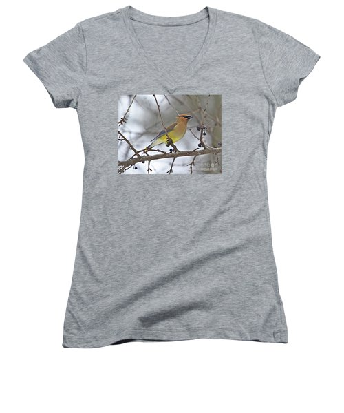 Cedar Wax Wing-2 Women's V-Neck T-Shirt (Junior Cut) by Robert Pearson