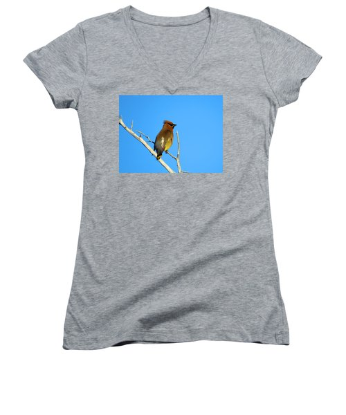 Cedar Waxwing Women's V-Neck T-Shirt (Junior Cut) by Dianne Cowen