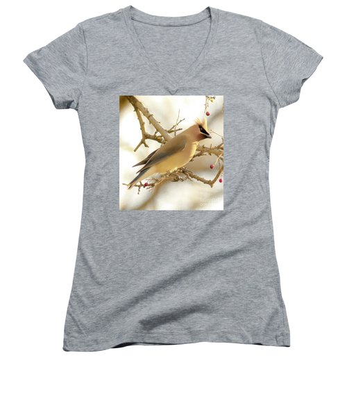 Cedar Waxwing Women's V-Neck (Athletic Fit)