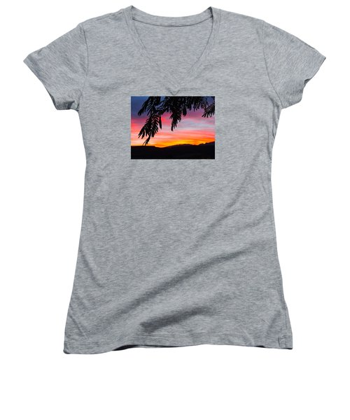 Celebrate Women's V-Neck T-Shirt