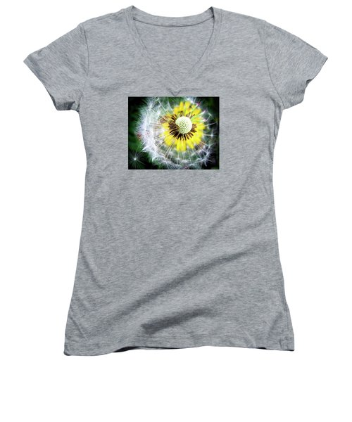 Celebration Of Nature Women's V-Neck T-Shirt