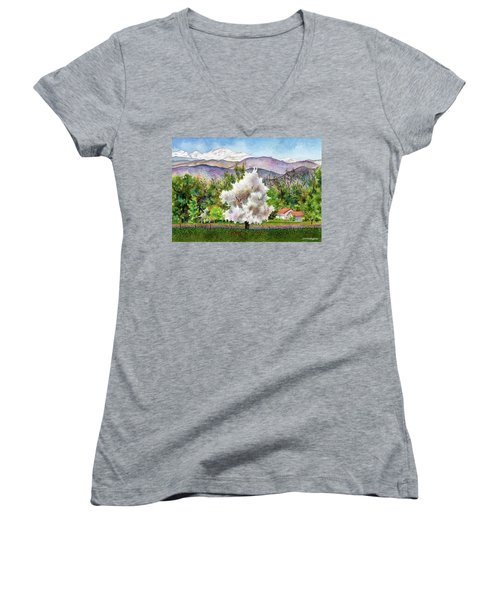 Celeste's Farm Women's V-Neck T-Shirt (Junior Cut) by Anne Gifford