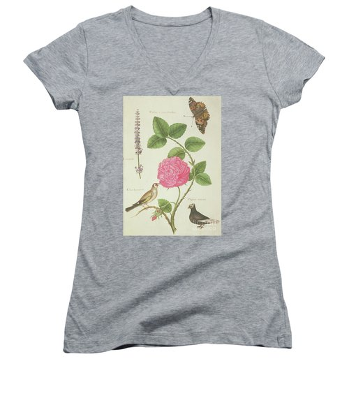 Centifolia Rose, Lavender, Tortoiseshell Butterfly, Goldfinch And Crested Pigeon Women's V-Neck T-Shirt (Junior Cut) by Nicolas Robert