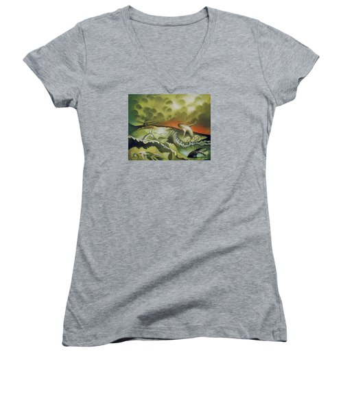 Cetacean Sunset Women's V-Neck T-Shirt