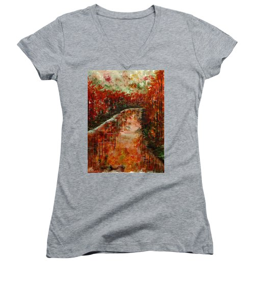 Changing Room Women's V-Neck T-Shirt