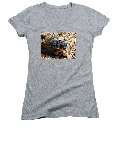 Charlie Women's V-Neck T-Shirt (Junior Cut) by Joseph Frank Baraba