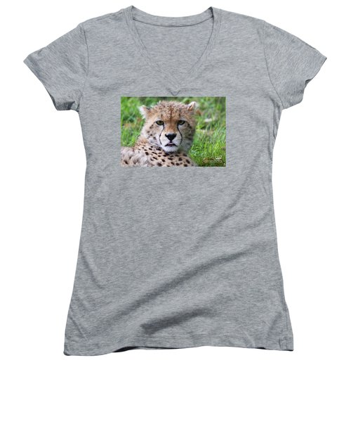 Women's V-Neck T-Shirt (Junior Cut) featuring the photograph Cheetah by MGL Meiklejohn Graphics Licensing