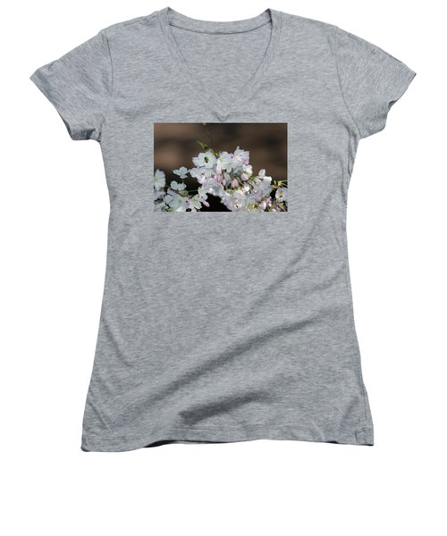 Cherry Blossoms Women's V-Neck T-Shirt