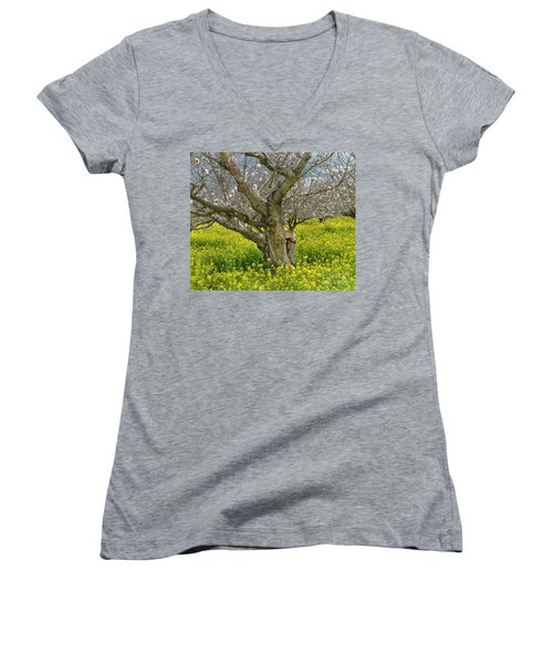Cherry Orchard 8 Women's V-Neck (Athletic Fit)