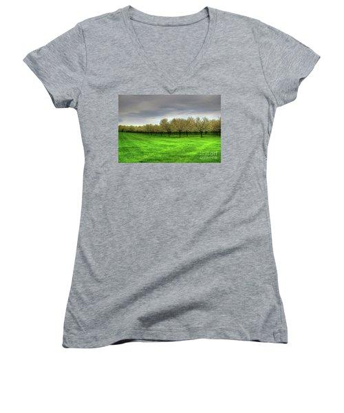 Cherry Trees Forever Women's V-Neck T-Shirt (Junior Cut)