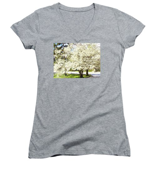 Cherry Trees In Blossom Women's V-Neck T-Shirt (Junior Cut) by Irina Afonskaya