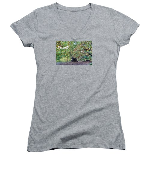 Chestnut Tree In Autumn Women's V-Neck (Athletic Fit)