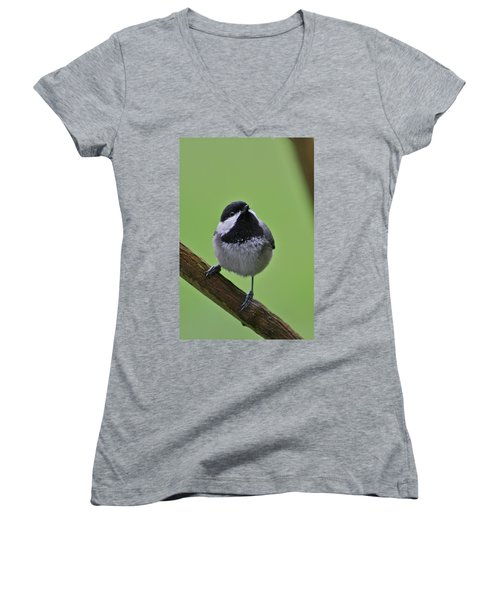 Women's V-Neck T-Shirt (Junior Cut) featuring the photograph Chic A Ddd by Cathie Douglas