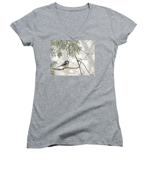 Chicadee In A Snow Storm  Women's V-Neck