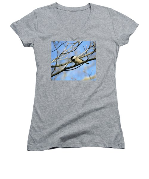 Women's V-Neck T-Shirt (Junior Cut) featuring the photograph Chickadee by Cathy Harper