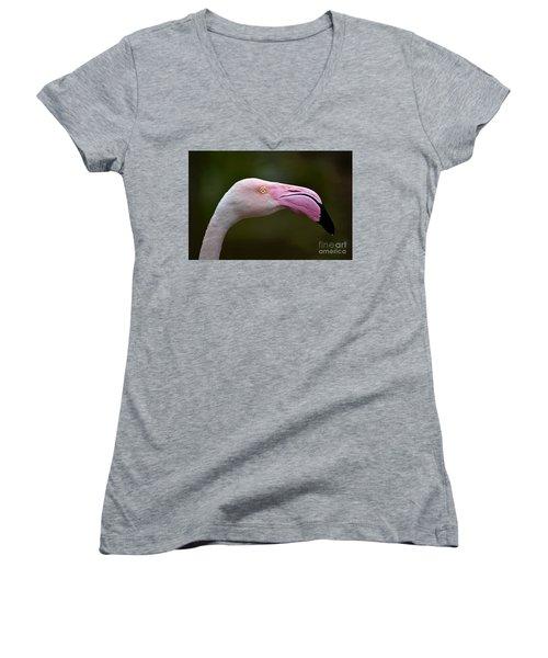 Chilean Flamingo Portrait Women's V-Neck (Athletic Fit)