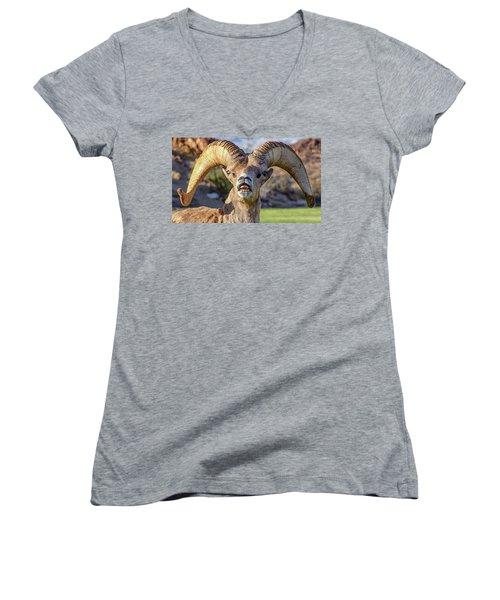 Chin Down Women's V-Neck T-Shirt