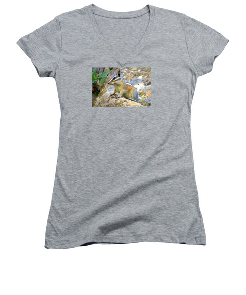 Chipmunk Women's V-Neck T-Shirt (Junior Cut)