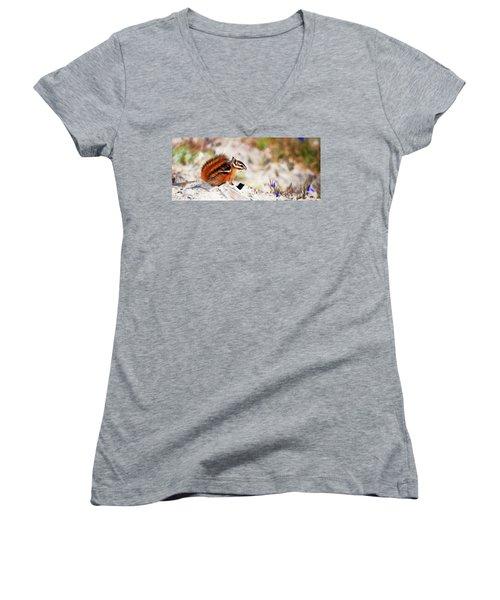 Chipper Women's V-Neck T-Shirt