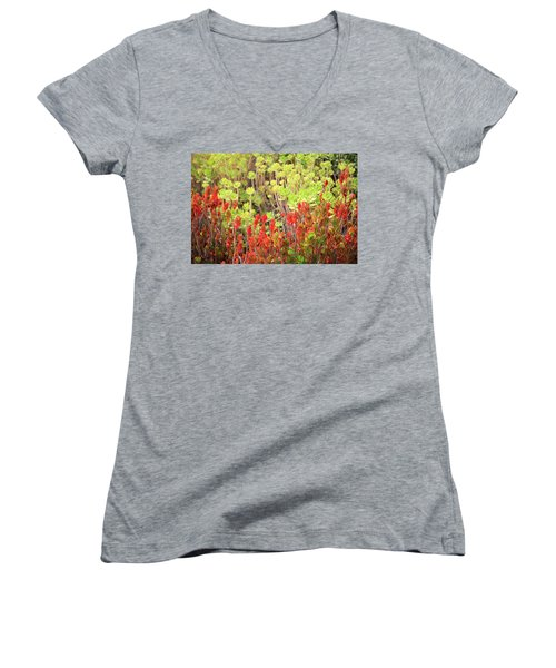 Women's V-Neck T-Shirt featuring the photograph Christmas Cactii by David Chandler