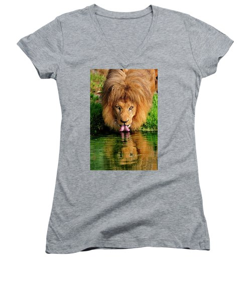 Christmas Lion Women's V-Neck T-Shirt