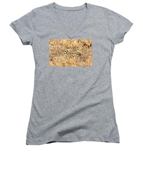 Women's V-Neck T-Shirt (Junior Cut) featuring the photograph Chuckar Bird Hiding In Grass by Sheila Brown