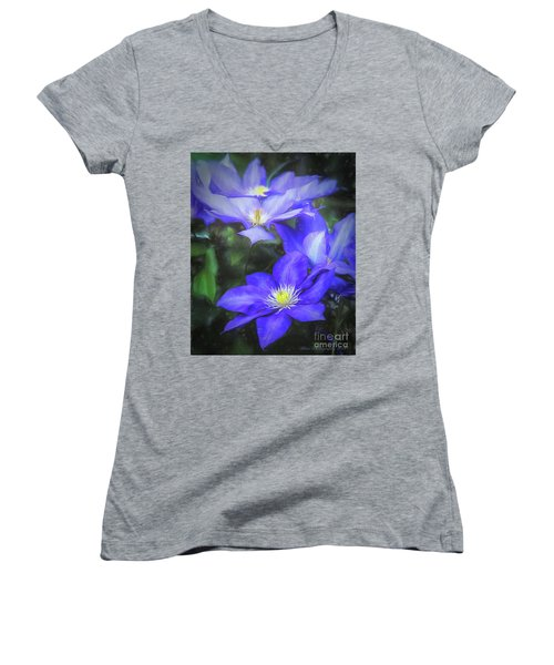 Clematis Women's V-Neck T-Shirt (Junior Cut) by Linda Blair