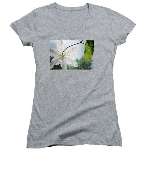 Women's V-Neck T-Shirt featuring the photograph Clematis Vine And Leaves by Michelle Calkins