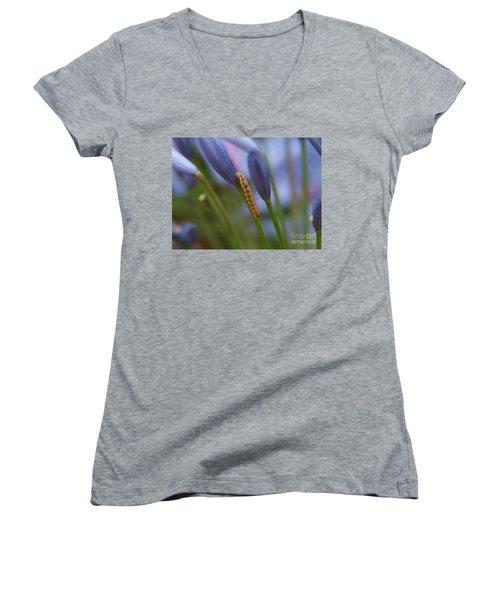 Climbing Caterpillar Women's V-Neck T-Shirt