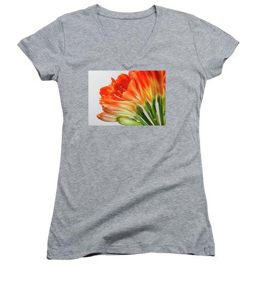 Clivia Miniata 2 Women's V-Neck T-Shirt (Junior Cut) by Shirley Mitchell