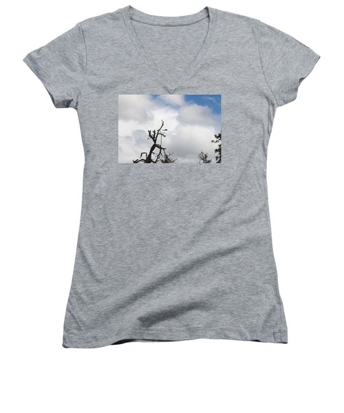 Women's V-Neck T-Shirt (Junior Cut) featuring the photograph Close Call by Marie Neder