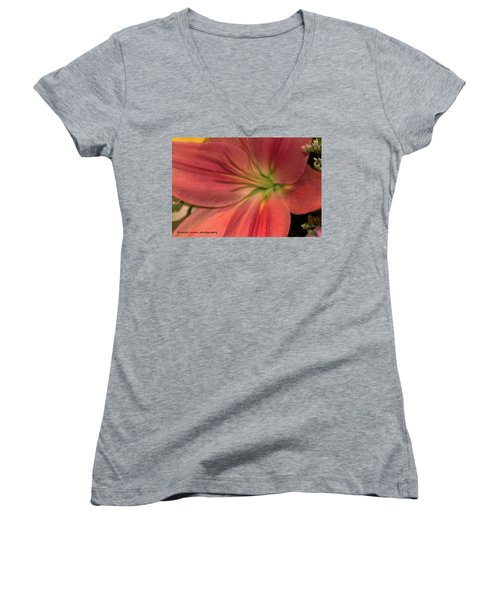 Close Up And Personal Women's V-Neck T-Shirt (Junior Cut) by Nance Larson
